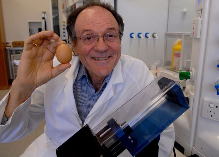 Eggscellent! Dr. Colin Raston, a chemistry professor with Flinders University, is all smiles at winning a coveted Ig Nobel prize for his invention, the Vortex Fluidic Device (pictured) (Flinders University)